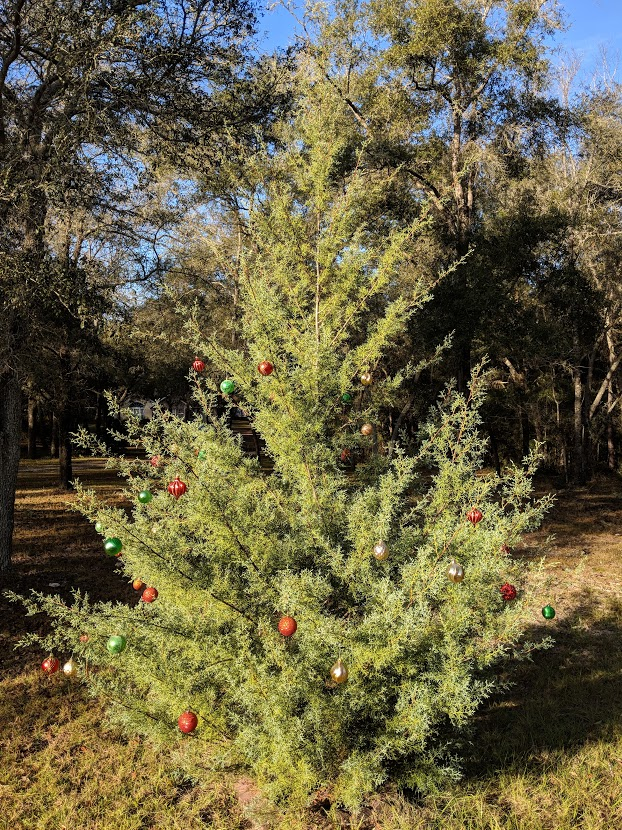 Christmastree2018